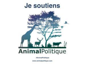 ap_jesoutiens