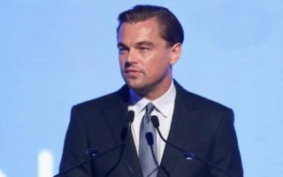 Lettre ouverte à Léonardo DiCaprio
